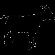 Krmivo pro ovce a kozy