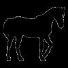 Krmivo pro koně (55)
