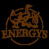 Krmivo pro slepice Energys (10)