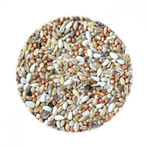 Směs pro holuby dieta mistrů  DYNAMICO (DM) 20kg