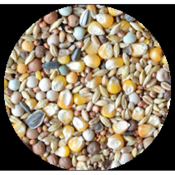 Směs pro holuby univerzální základní DYNAMICO  (B-D) 20 kg